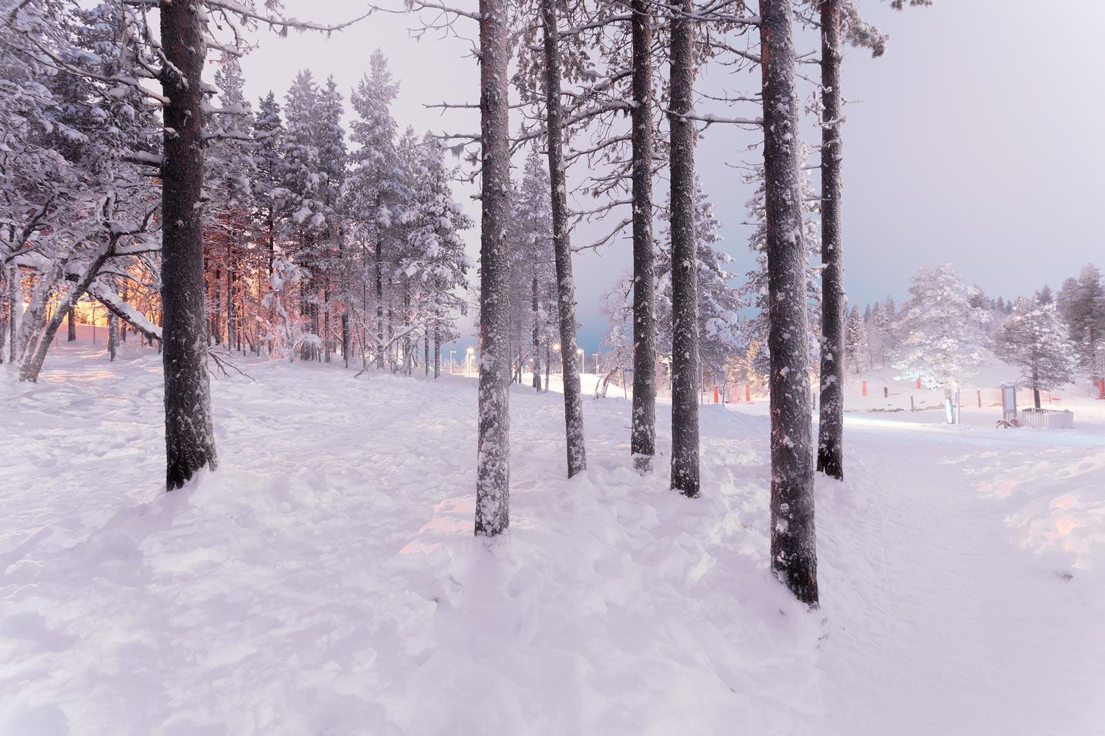 Lapland 1